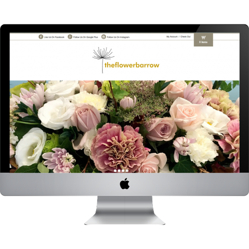 Web Design Hawkes Bay